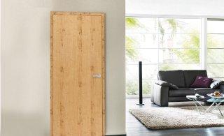 Hochwertig Holztüren